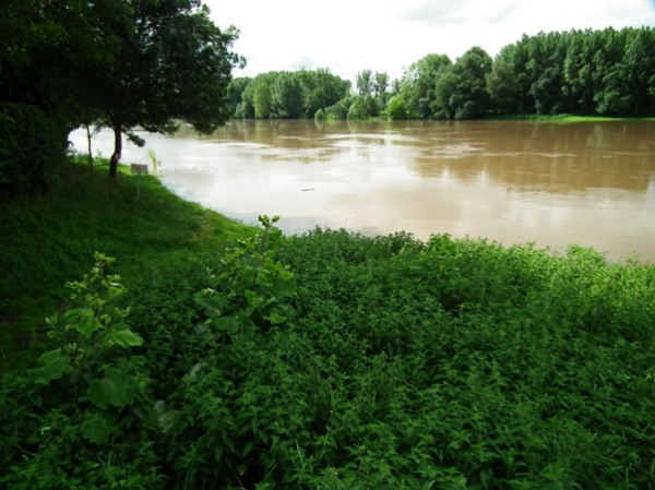 The Vienne in flood.