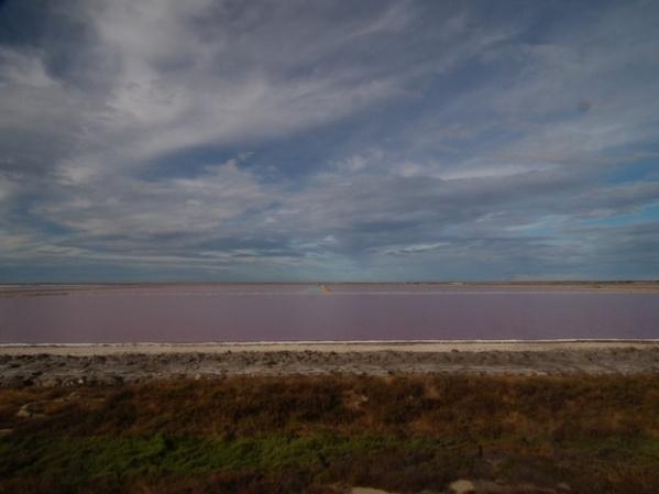 The purple salt evaporation lakes 2