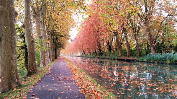 Fontet canal scene